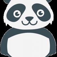 Wizzu-panda-dryly